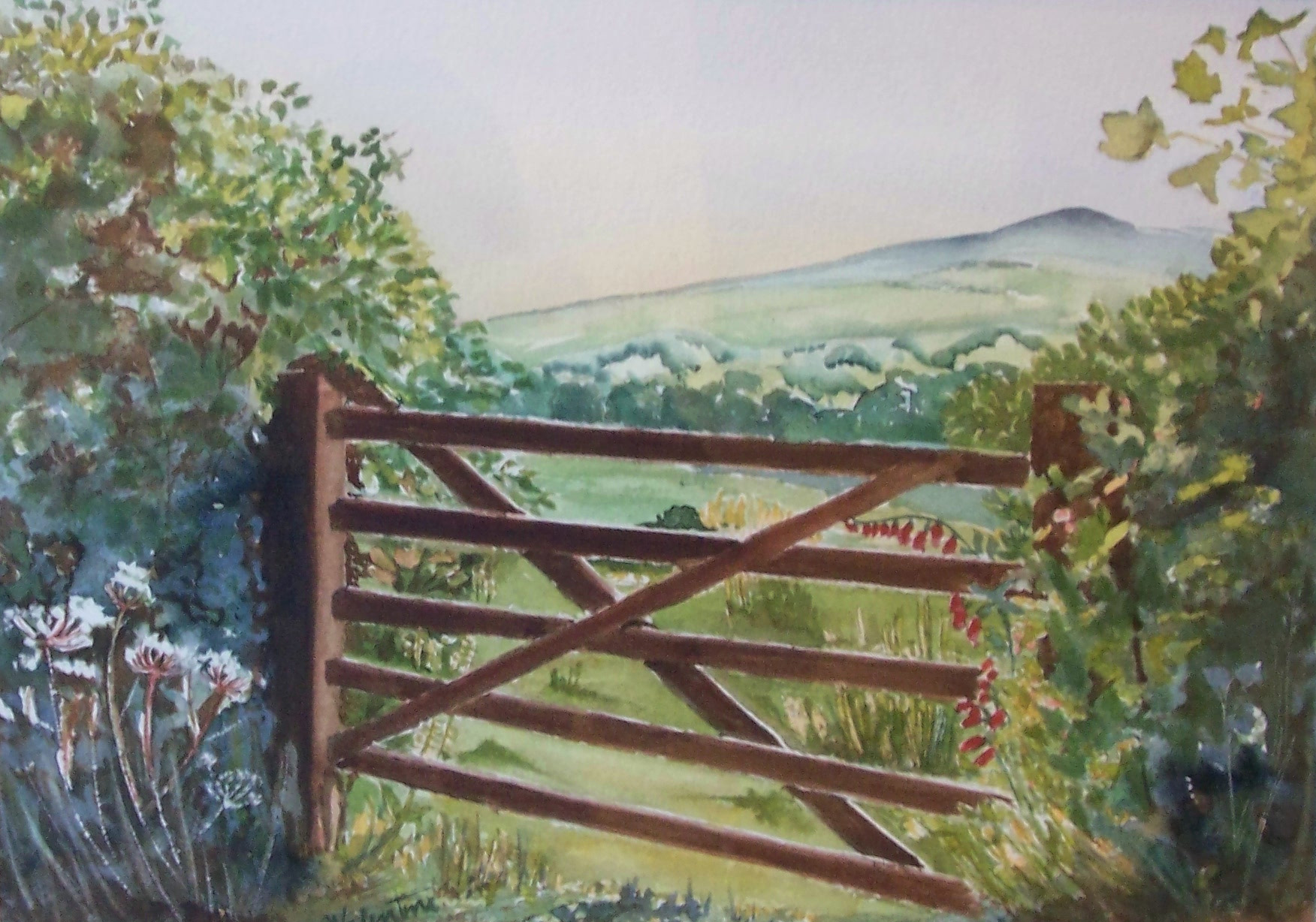 Gate on to Dartmoor
